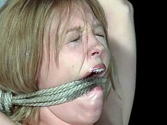 These chicks get tied up and gagged by some guys in strange masks in a backyard late at night. They get their pussies whipped and toyed in hot bondage video.