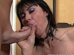 Sexy brunette pornstar gives arousing session of top blowjob pleasure