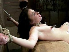Horny brunette girl gets tied up by her a some couple. Then a mistress fixes claws to Ashli's tits. It seems that Ashli loves pain.
