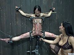 This slender and innocent Asian siren is under the obsession of Isis Love. She nails her on the wall and starts spanking her with as stick! S
