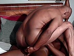 Ultimate black gays anal encounter as these amateur hunks try out some ass banging on camera. Their huge cocks will star on this video and they are inviting us to join them.