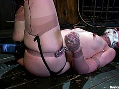 Cute dark-haired chick Sarah Shevon gets chained and tormented in a basement. Then someone beats her ass till it gets bloody and then smashes Sarah's coochie with a dildo.