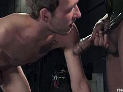 This ebony shemale siren Nyobi Khan ties his balls up tight and then sticks her black dagger deep in his asshole. Dean Strong gets weak after it.