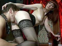 Redhead milf Maitresse Madeline is having fun with Steve Sterling. She rubs his dick ardently and then makes the stud lick her juicy cunt.