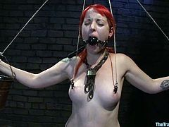 Kinky redhead bitch gets her tits tortured with claws. She also gets tied up and gagged. After that she gives deepthroat blowjob and gets toyed with a vibrator.