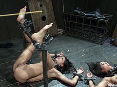 Lyla Storm and Skin Diamond are two superb brunette babes with sexy bodies. They gets bonded and whipped. Later on they also get toyed with a vibrator.