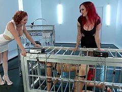 Audrey Hollander and Mz Berlin put a brunette girl in a cage and torture her with electricity. This slave girl also licks pussies and gets toyed with a vibrator.