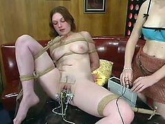 See the hot lesbian femdom action taking place in this bondage video with strapon sex, pussy torture and more.