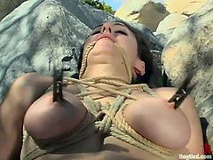 This is sort of a compilation of BDSM scenes with some sexy chicks like Darling and Jenni Lee. Darling gets tortured by a military man, while Jenni and other are getting abused in Miami.