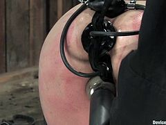 Amber Rayne and Cherry Torn get tied up and then toyed deep. They get their tight asses and pussies stuffed with different dildos. Later on they also get toyed by fucking machines.