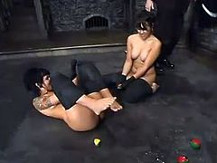 The painsult session for two desirable and kinky babes Maya and Blaze. They get tied up and babes cant make a move. Then babes get toyed hard.