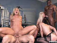 Amy Brooke, Bobbi Starr and Carla Cox are fucked hard in a men's locker room