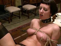 Brunette chick in stockings gets whipped. After that her master fixes clothespins to her nipples. After that she gets toyed with a vibrator.