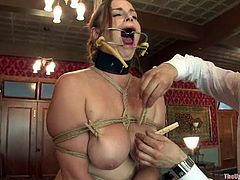That is the list of horrible, but pleasant things that happen to Bella and Cherry. Though, both of them had never felt more pleasant than in this BDSM porn video!