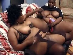 Ebony BBW whores Chataque and Milk Shaker masturbating each other with big toys in Los Angeles. The lesbians sure know how to do it.