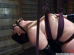 Caroline Pierce deepthroats a strapon and gets tormented in BDSM vid