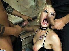 Blonde Anita Hengher is in the mood for snake sucking