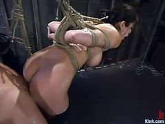 Evan Stone is this crazy Tarzan who is going to fuck this amazing brunette babe Shy Love! She bends over, being tied up and he pokes her anus with love and desire!