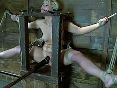 Gorgeous blonde girl gets tied up to special bondage device and sucks a dildo. After that the guy shoves a hook in her ass and toys her pussy.