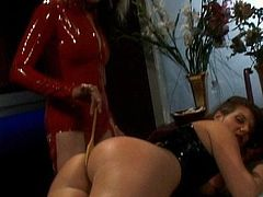 Hotties in latex costumes are having fun masturbating one another in femdom style