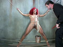 Daisy is tightly bound with rope and pushed against the wall, by her sex master. She cannot scream for help, because her mouth is gagged. He takes a vibrator to her cunt, until it's dripping wet. The master has a pail beneath her cunt, to catch all of her pussy juice. The rope rides up her pussy crack.