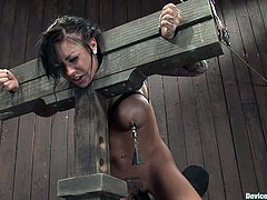 This sassy brunette babe with some fine shapes gets naked and her sex master submits her petite body on the yoke bar. Full access on her treasures!