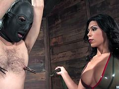 Tied by his hands and cock, with a leather mask on his head, and laundry pliers on his nipples, Lefty is at the mercy of his mistress. She takes great pleasure in punishing him and even rubs his dick, for some extra teasing. The sensual brunette mistress loves her job and she's barely started!