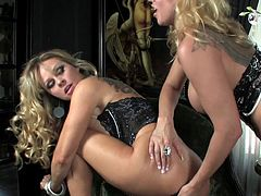 Sweet lesbians are having a great time deep masturbating one another's wet pussy