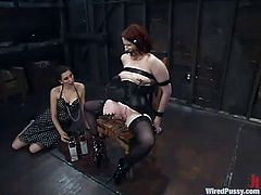 Well one thing can explain the madness of this porn video. Princess Donna Dolore is a mistress for Claire Adams. And she is so in trouble!