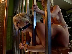 Ashley Fires and Kait Snow are having a good time in the bedroom. The mistress binds and tortures her chubby friend and then fucks her cunt deep and hard with a strapon.