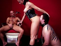 Juggy brunette mistress makes her husband watch how she gives blowjob to one submissive guy. She sucks one cock and gets her anal hole rimmed by one freak on a leash.