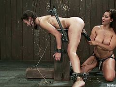 But this is a BDSM and no erotica is acceptable. So Isis Love traps Sinn Sage in the bondage device and then bangs her doggy style!