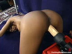 Nasty Black chicks get their pussies drilled by a fucking machine. After that these lesbian chicks use double headed dildo.