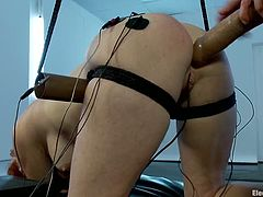The redhead Audrey Hollander is going to get fucked by Gia Dimarco's big strapon dildo right in the ass in this bondage femdom lesbian video.