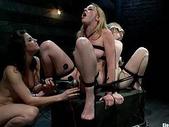 They've been so fucking gentle and sensual and it annoyed Bobbi Starr. So she ties them up and gives them some hard BDSM lesson! Fucking amazing!
