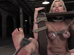 Sexy Adrianna Nicole gets tied up by Claire Adams in a basement. After that she also gets her ass spanked and pussy stimulated with electricity.