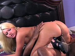 Hot beauty feels amazing during top interracial hardcore porn show