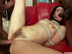 Mom Bobbi is tied up and she's about to find out, what these black guys want from her. They begin roughly fuck her mouth and hairy pussy. First she's putted on her knees and they fuck her between those sweet lips and then, they make her comfortable on the couch, and pound her hard