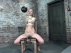 What a steaming hot and brave girl Annette Schwarz is! She stands it all in this amazing BDSM porn video and for that she is a fearless one.