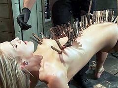 Master Owen puts hundred of clothespins on the body of his sex slave, Amanda Tate. He runs the clothespins down the length of her body, from her tits to her pussy lips. She's tied up with rope and her back is arched. He takes a big dildo and sticks it in her cunt. A vibrator is attached to her clit.