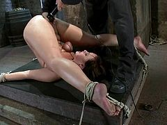 Stunning brunette girl gets hog tied and whipped with a stick. Later on she also gets her tits twisted and pussy toyed with a vibrator.