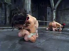 Blaze and Maya get tied up and humiliated by their master. Later on their get their tits tortured with metal claws.