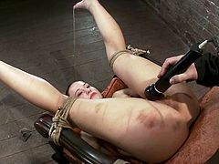Well, not only, as it's some damn wild BDSM action! This petite and kinky sex doll is going to be tortured so fucking hard! Amazing!