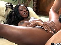 Two raunchy dollies Trina Michaels and Jada Fire meet up with a horny black bloke for some intense threesome action. They have their delicious pussies licked before they gulp down that big black cock. They spread their soft legs and take turns in being penetrated with a huge black piston.