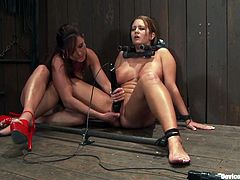 Christina Carter and Trina Michaels are getting dominated by another girl in this femdom bondage BDSM video packed with hot kinky lesbian action.