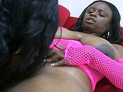 Horny ebony ladies reveal their lesbian side in this scene as they lick and touch each others' huge black tits  and toy each others' wet pussy till orgasm!