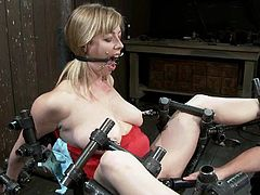 Busty blonde milf Adrianna Nicole lets some man bind and torment her in a basement. The dude attaches pegs to Adrianna's boobs and then fingers her cunt and rubs it with a dildo.