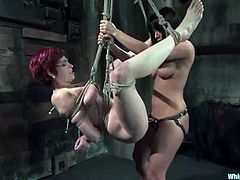 Some suspension and breast twitching to go through