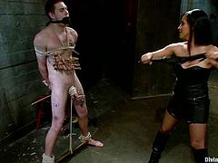 So, here is this delightful mistress Isis Love and she got some tools to make fun of Hayden Russo! She belts him down and slaps his ass before sucking his cock!