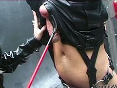 Provocative blonde mistress is wearing leather costume looking hell seductive. She lifts the guy down the ceiling up side down. She sucks his dick deepthroat while he is tied up. Later on she facesits him barely leaving air to breath. She also sucks meaty cocks of two other sex slaves.